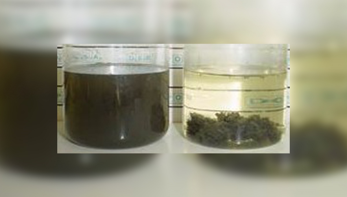 Jar Test of treated wastewater after physical-chemical process with Sigmadaf's DAF-ACAF10 equipment.