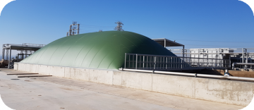 Biodigestion plant implemented in a frozen vegetable industry.